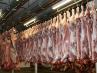 abattoir_viande
