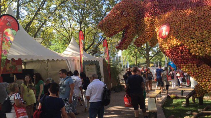 Un chapiteau de la Foire internationale de Strasbourg 2016